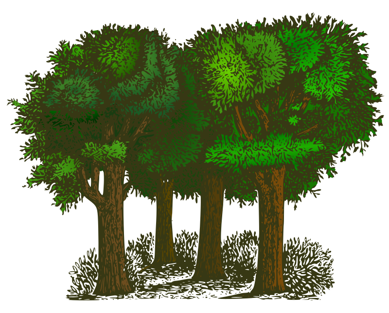 Colorized Group of Trees