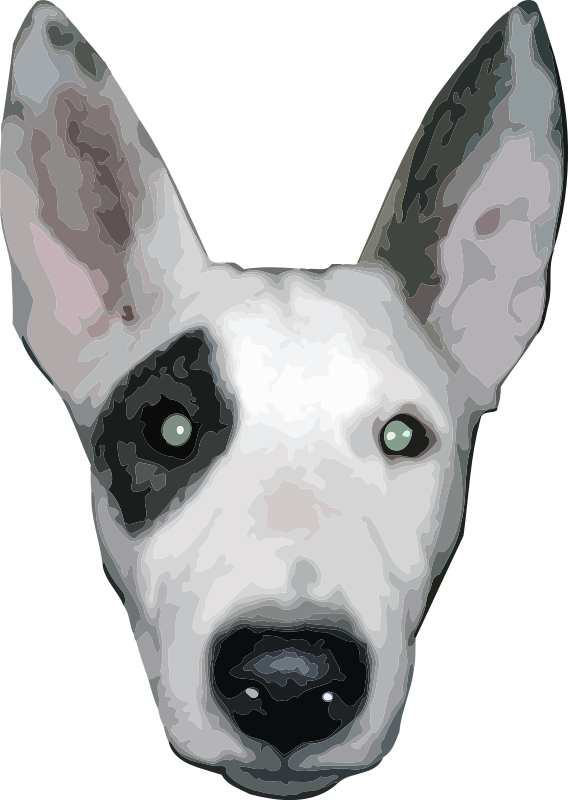 HighRes, Bullterrier head