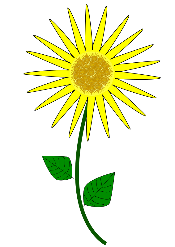 Flower, Sunflower