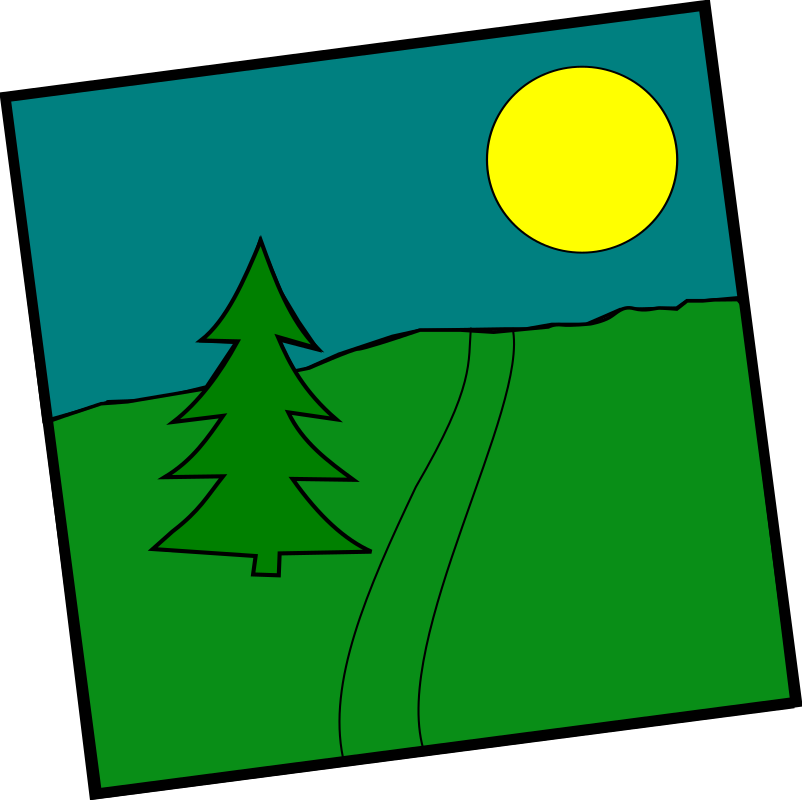 Landscape With A Picea