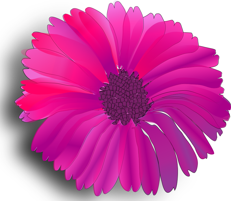 flower pink by worms_x - Pink fuchsia flower with many petals. Works better if the svg isn't too big, 250px wide or so.