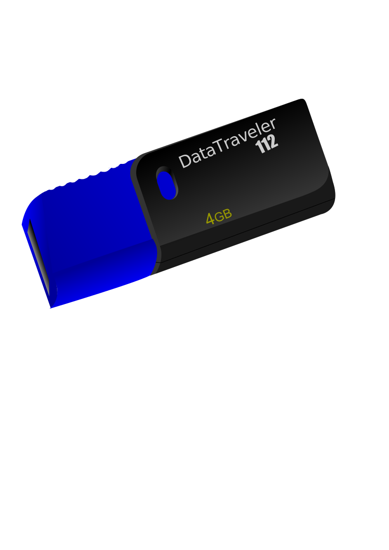 USB Flash Drive Kingston DataTraveller 112 by Liquid Snake