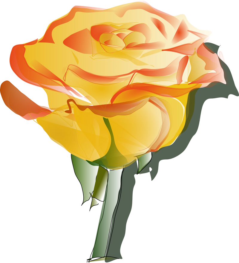 YellowRose3 by Reedabadeeda - YellowRose withour background