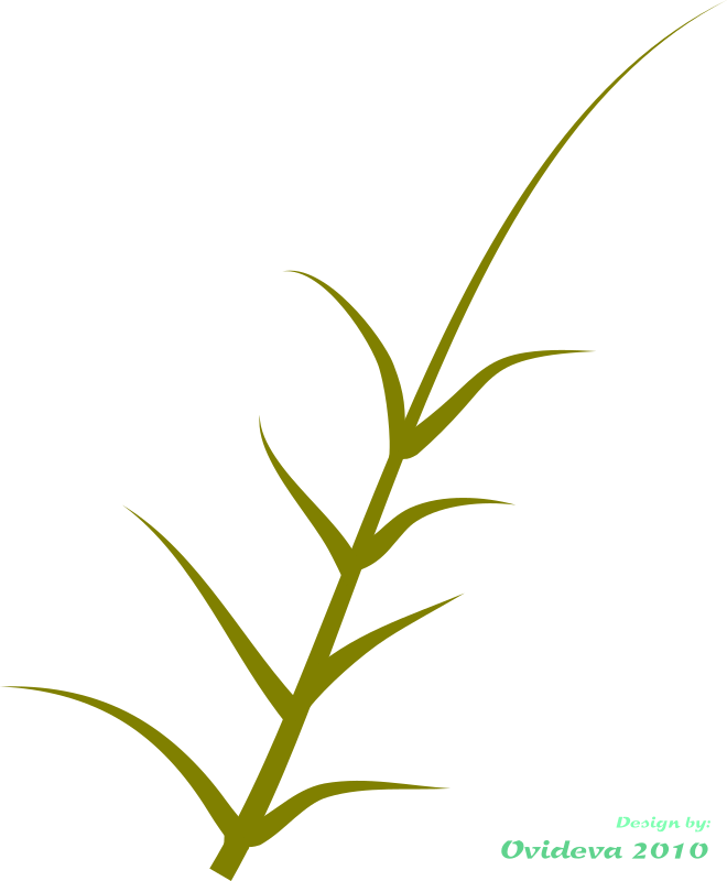 green plant by ovideva - Green plant made using inkscape