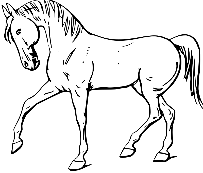 "Walking horse outline by warszawianka - I've cleaned the picture so that it contains only a horse. I've also made a ""saddled"" version."