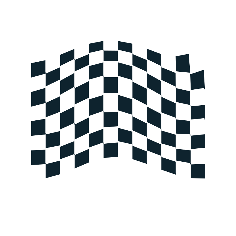 chequered flag icon 2 by netalloy