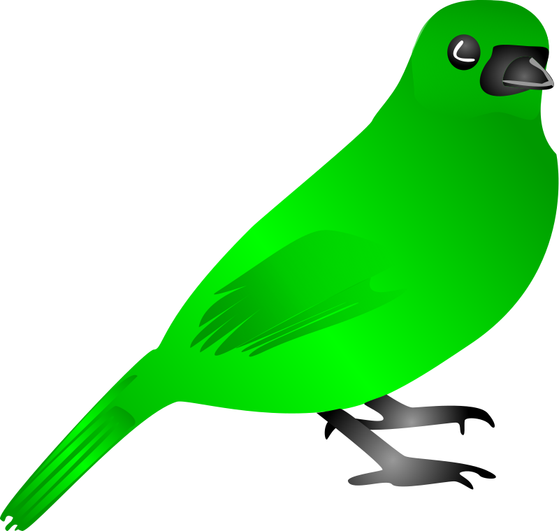 Bird by LiquidSnake - It's a simple bird, drawn on a photo.