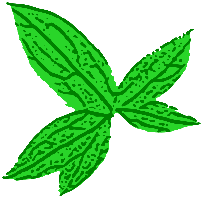 Green Leaf by thejukka - Just a simple leaf I traced out from a complex bitmap with Inkscape =)