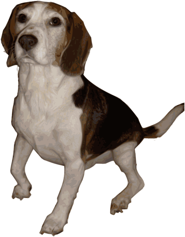 Beagle Medium Version by Merlin2525 - Merlin2525's Pet Beagle, Bitmap Traced. This is the medium version that shows more detail. My trusty friend has gone high tech!