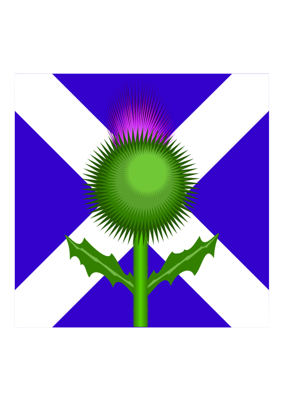 Scottish Thistle and flag by kevie - The two national emblems: the flower of Scotland: the thistle in front of the national flag: St Andrews cross