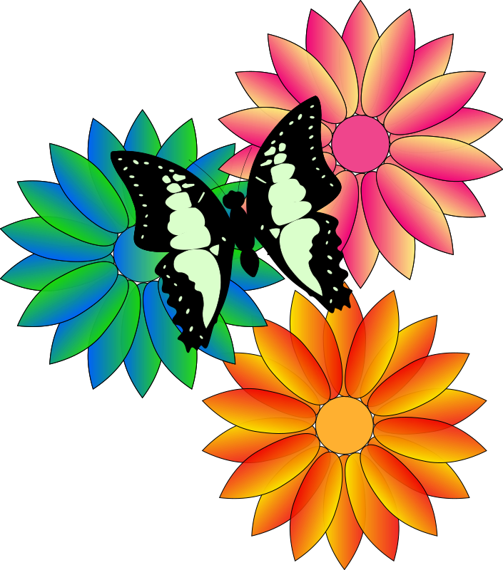 butterfly and flowers by Anonymous -