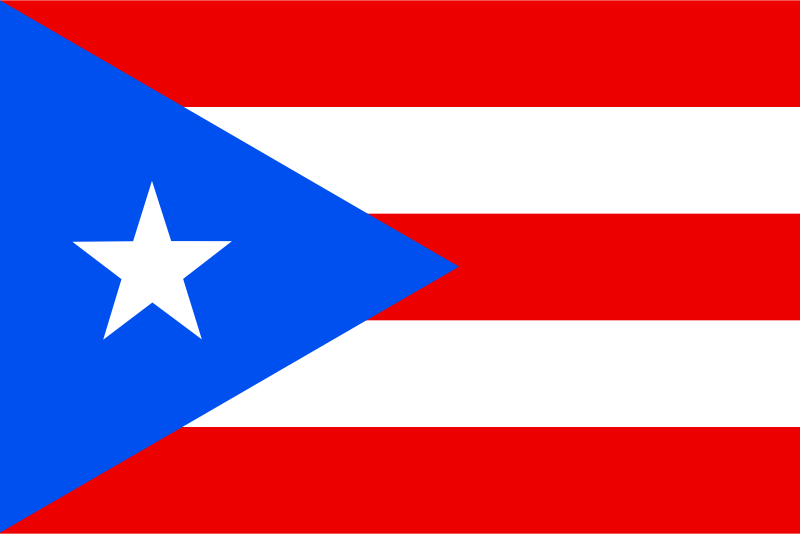 Flag of Puerto Rico by Anonymous