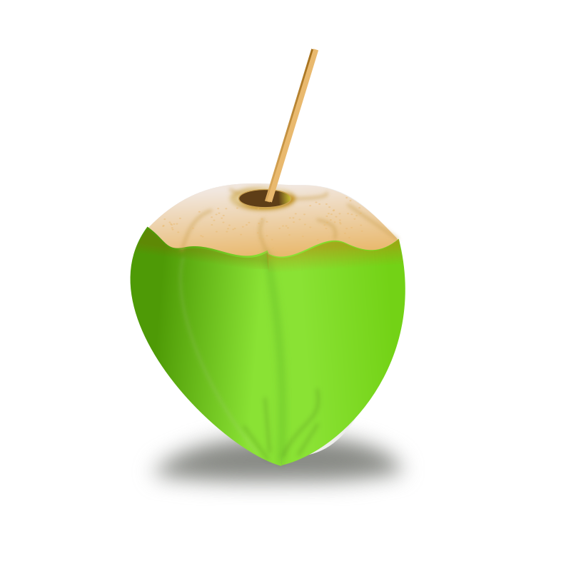 The gallery for --> Coconut Icon