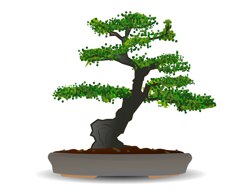 Bonsai by gnokii -