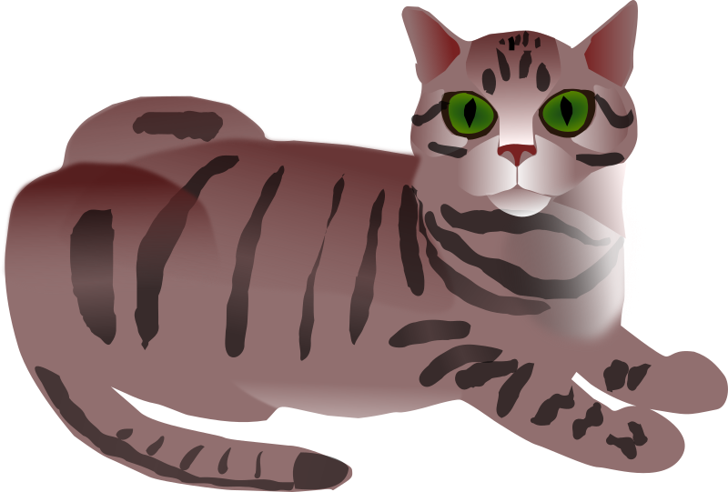 Tabby Cat by Nadenka1 - Cat with gray stripes and green eyes