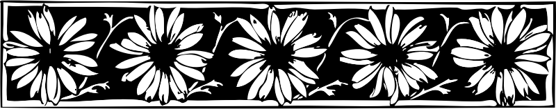 daisy border by johnny_automatic - a daisy border from http://runeberg.org/ordochbild/