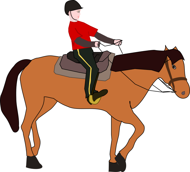 Horse Riding Lesson by OlKu - A person who has horse riding lesson