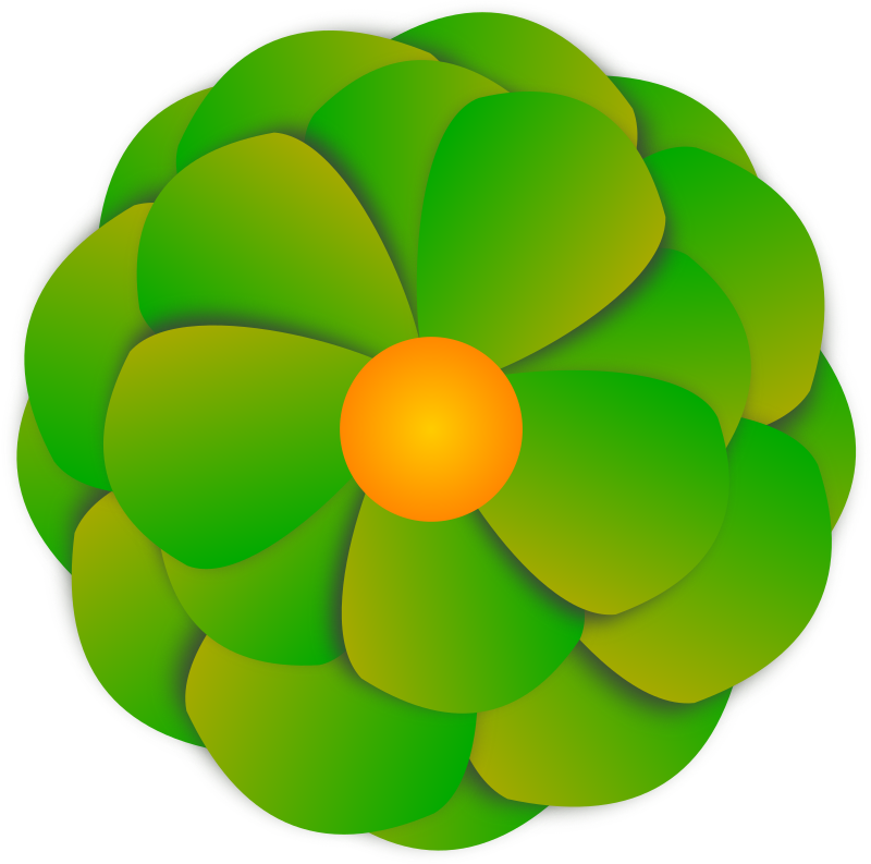 angolo aureo fiore by dordy - A flower with green petals and yellow middle