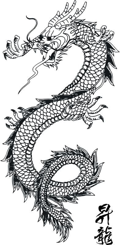 "Dragon Vector Art 1 by samuraiagency - Free Dragon Tattoo Picture from ""Vector-Cliparts-EPS.com"""