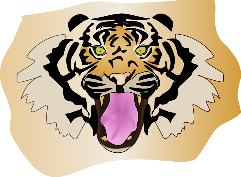 tigre by antroares - tiger head