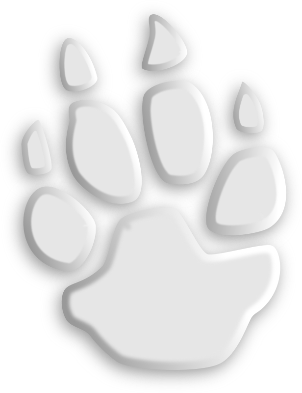 Footprint #6 by tatica - several grayscale foot trace from different animals