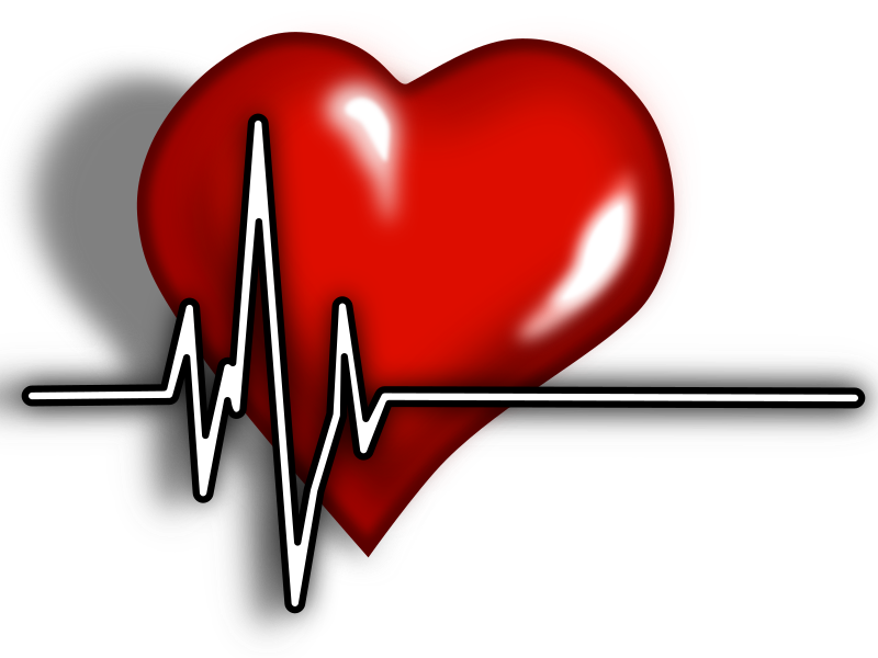 Heart ECG Logo by juliobahar - A heart with ECG complex best for being a logo on medical websites