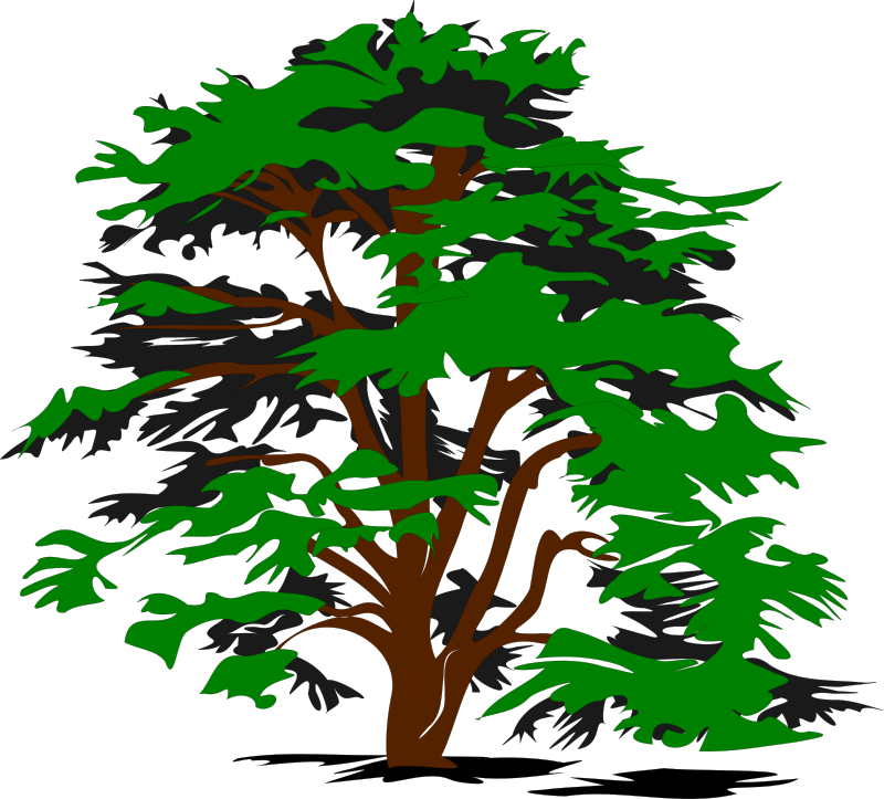 simple vector tree by bobocal - A simple vector tree.