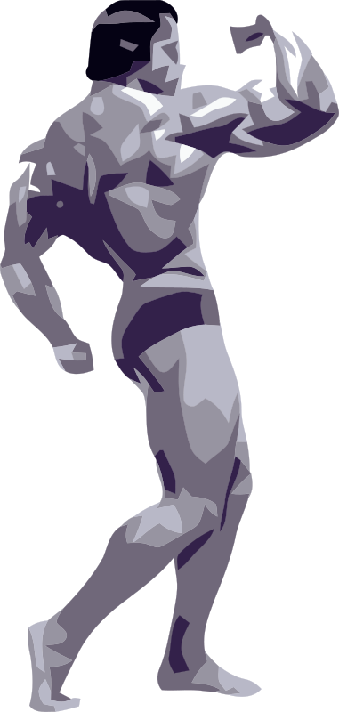 Posing Bodybuilder by SRD - Very abstract vectorisations with 3-4 colors, but it looks like s/w-photography.
