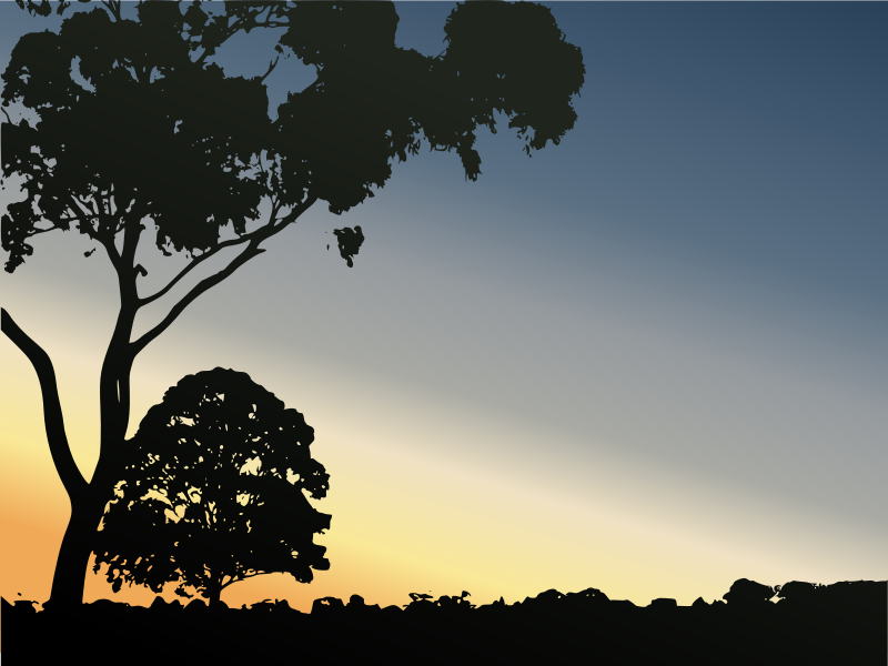 Winter Sunset in Royal Park by kattekrab - Vector trace of a sunset landscape