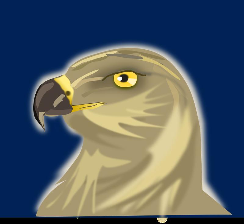 clipart hawk hawk clipart wrestling hawk clipart free