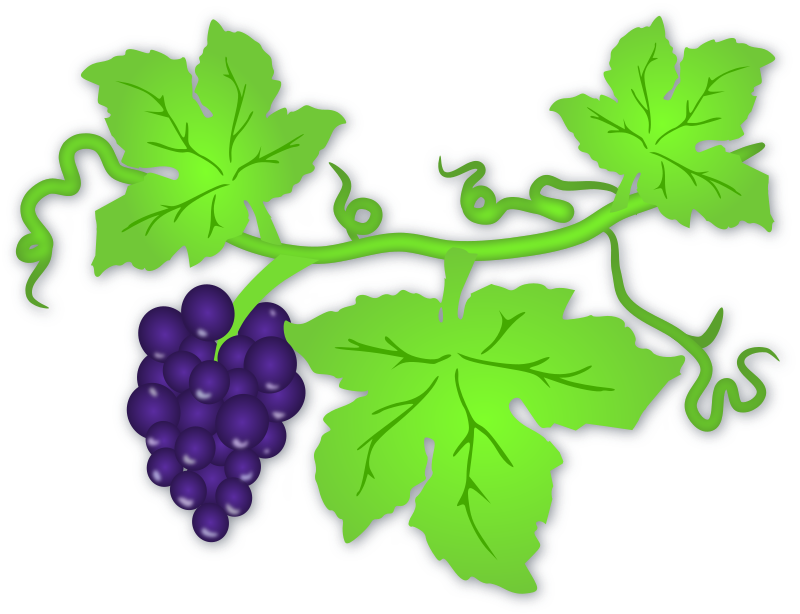 Grapes by gnokii - alcohol, clip art, clipart, dark, drink, fruit, fruits, grapes, green, leaves, purple, vine, wine,