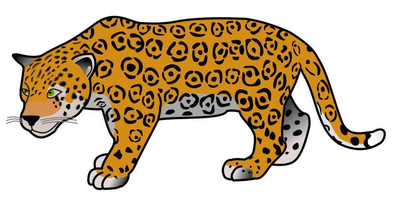 Jaguar by frankes
