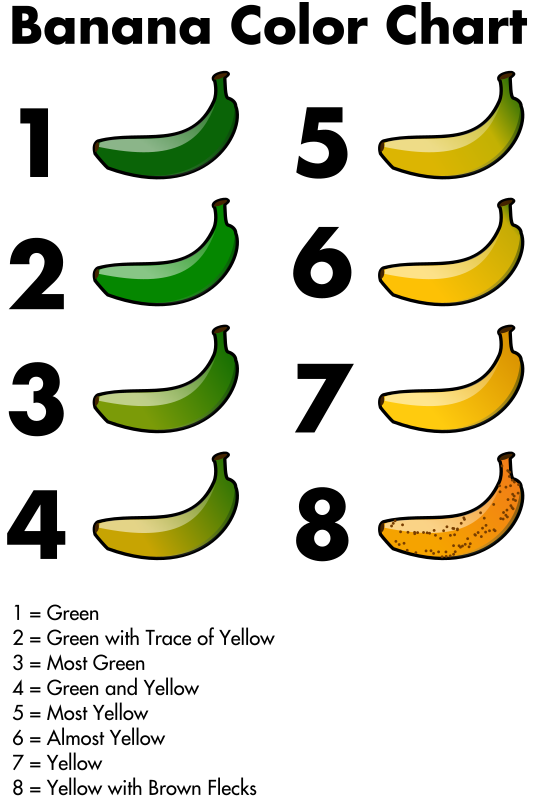 Banana Color Chart by jhnri4