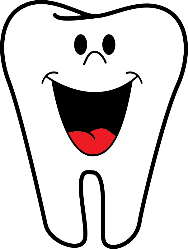 http://openclipart.org/image/800px/svg_to_png/168471/tooth.png