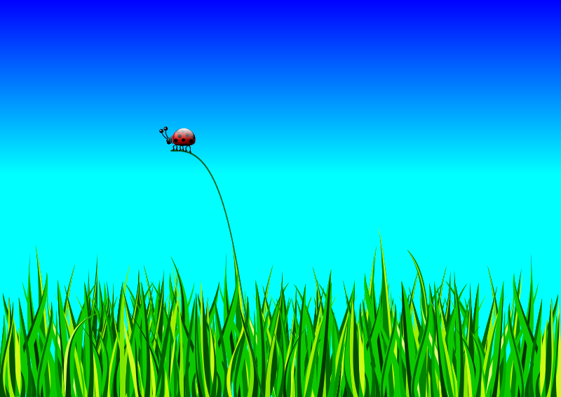 Grass with bug by roshellin - Grass with bug