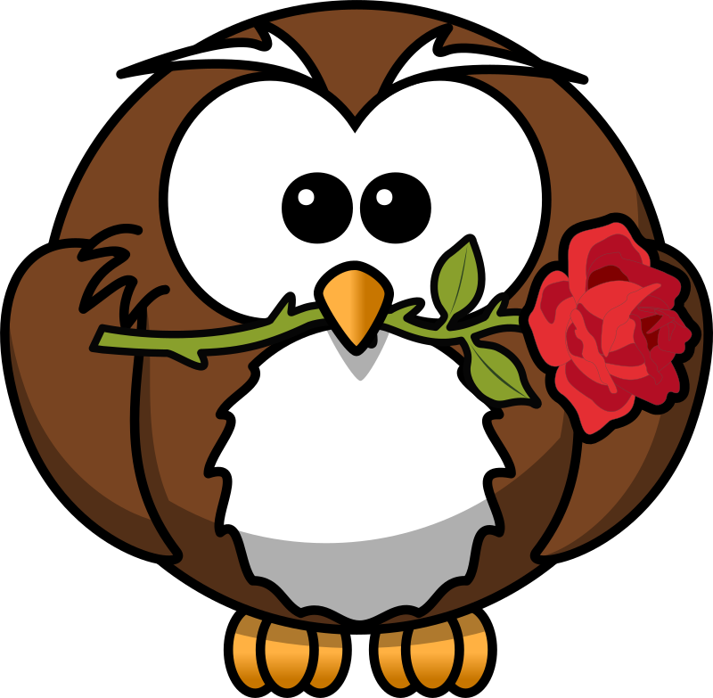 Owl with rose by bocian - Owl with rose