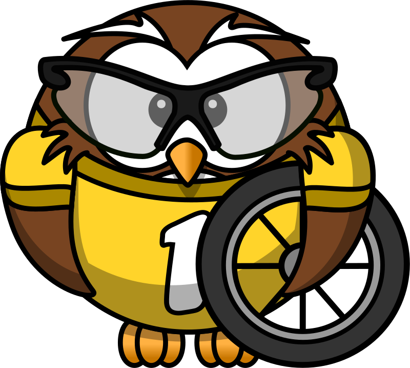Owl cyclist by bocian
