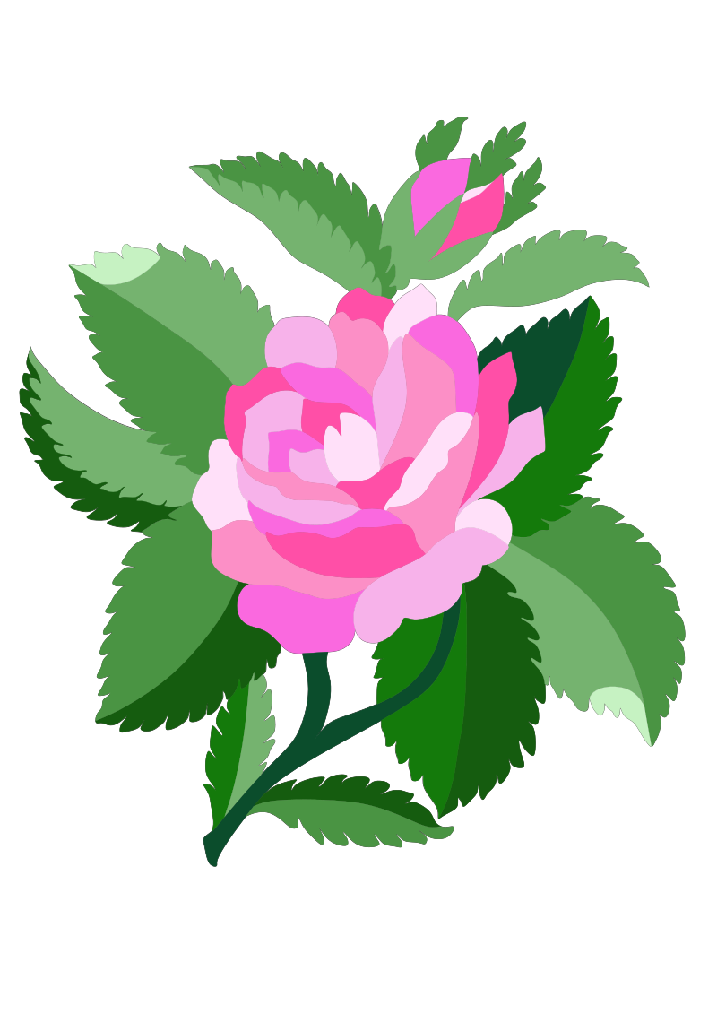 Design for damask rose by Craftsmanspace - Hand traced from public domain book