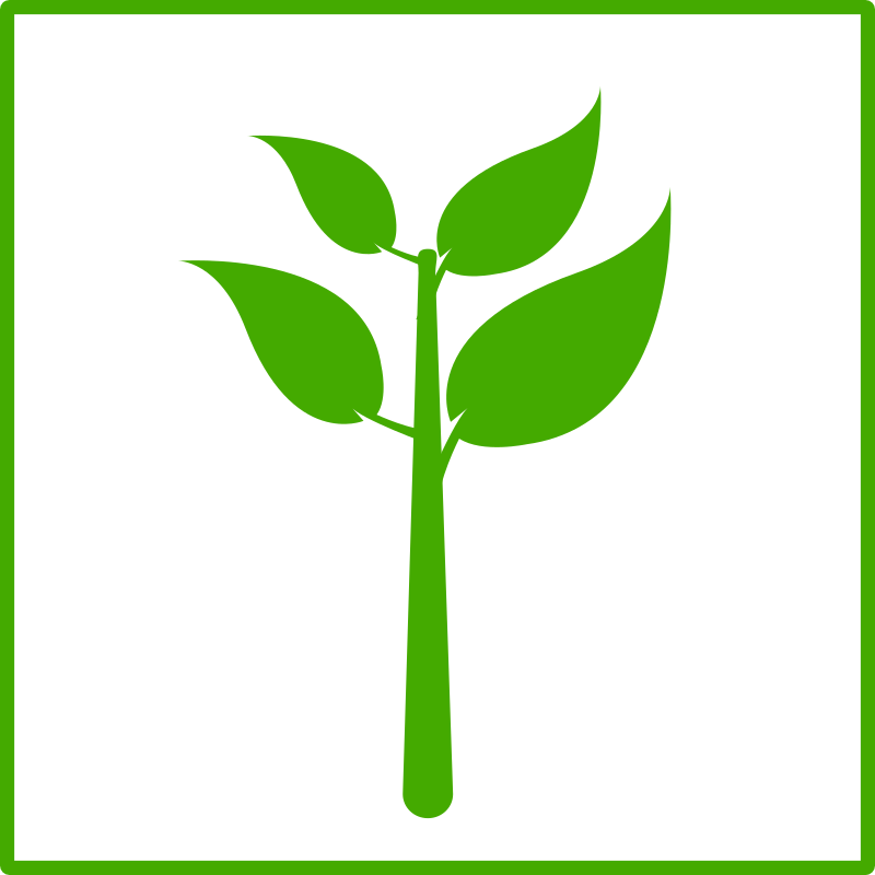 eco green plant icon by dominiquechappard -