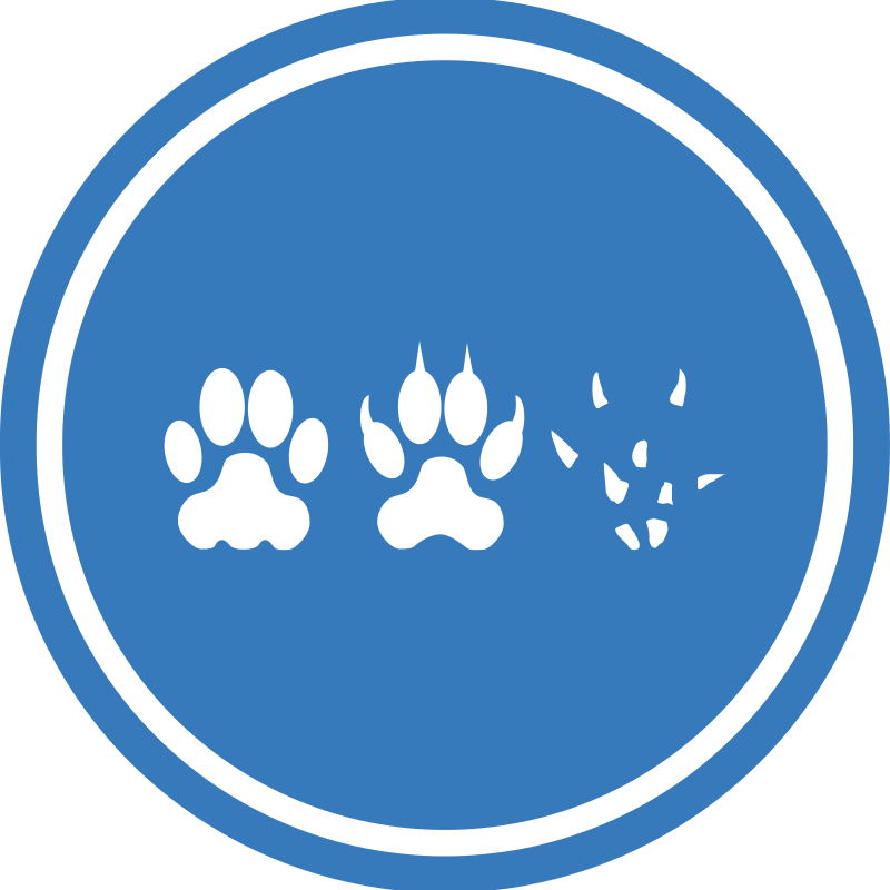 Cat-Dog-Mouse Unification Peace Logo by qubodup - But what about tigers?
