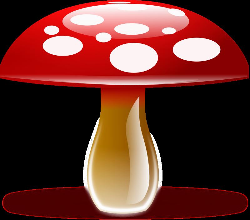 mushroom by diamonjohn