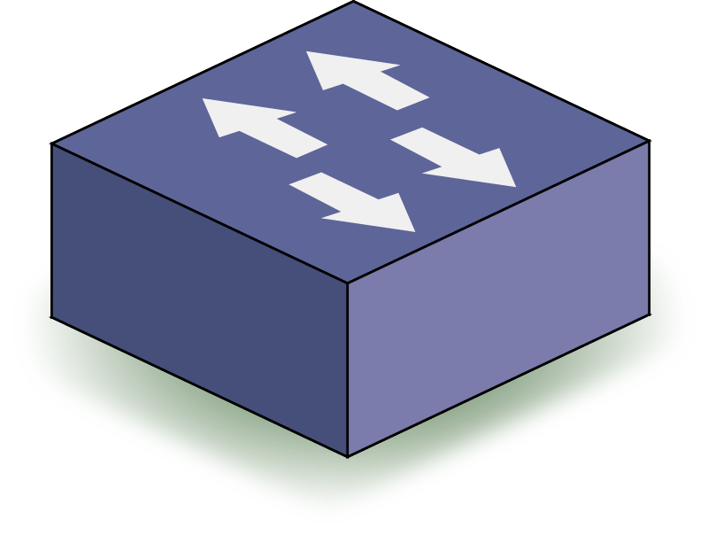 Network Switch graphic