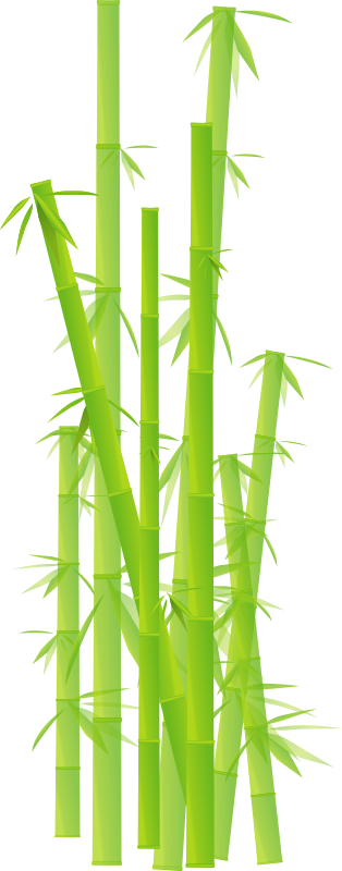 Bamboo by cyberscooty - bamboo, bambou, clip art, clipart, feuille, feuilles, grass, herbe, japan, japon, jungle, leave, leaves, plant, plante, stick, tige,