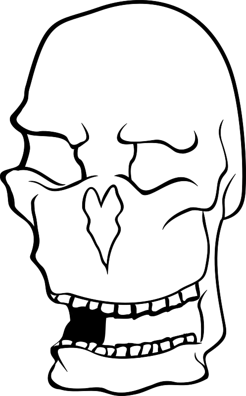 skull by drunken_duck - lineart skull