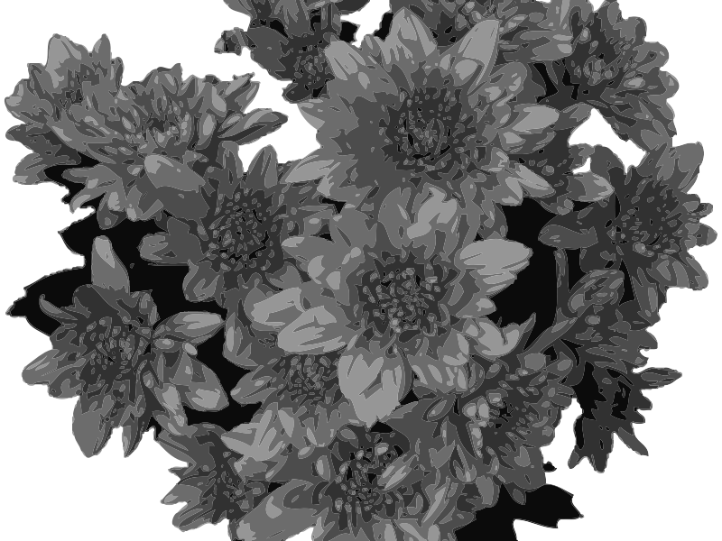 Flowers  in Greyscale by Fractalbee - Decoration: flowers in greyscale.