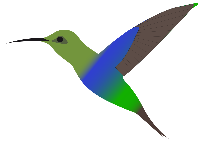 Clipart - humming-bird