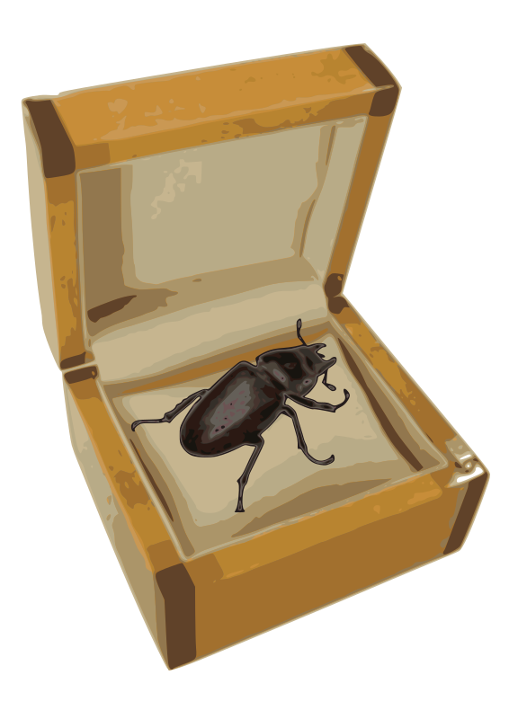Beetle in a Box by danfreak - Illustration of a Beetle in a Box