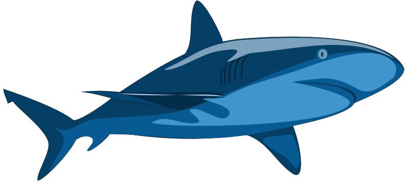 Shark Pure by mi_brami - Shark, solid unshaded