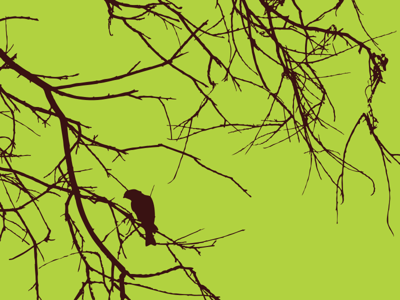 Bird Branches by enlivendesigns