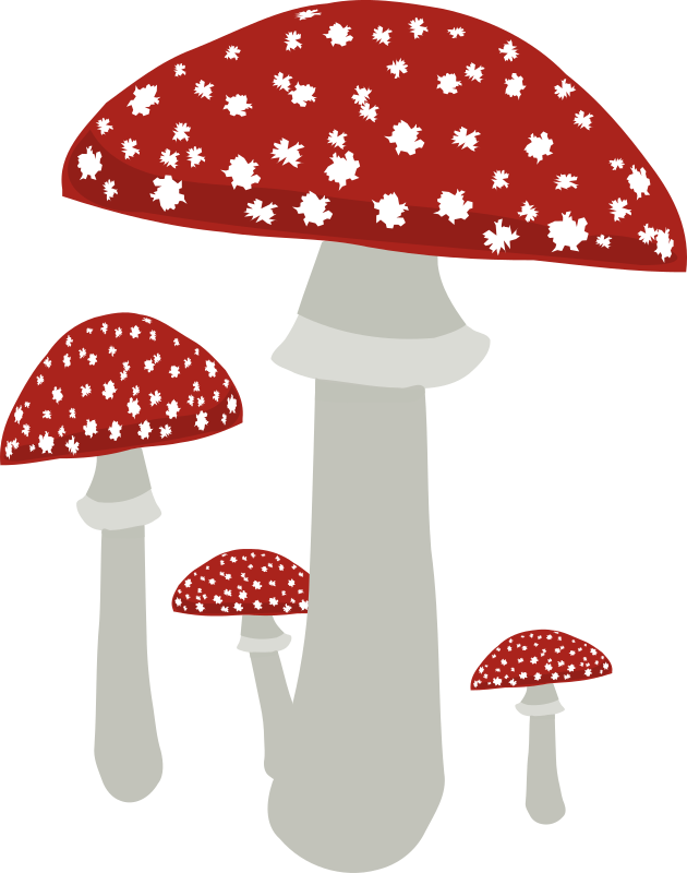 Mushrooms 4 by opk